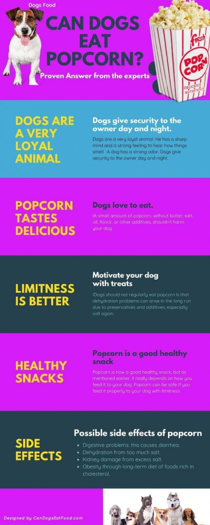 Can Dogs Eat Popcorn Infographic Image